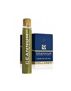 Actafarma Ceannum Vial Oral 10x2,5 ml